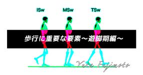 歩行に重要な要素〜遊脚期編〜