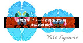 基礎医学シリーズ神経生理学編―大脳基底核①―