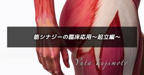 筋シナジーの臨床応用〜起立編〜