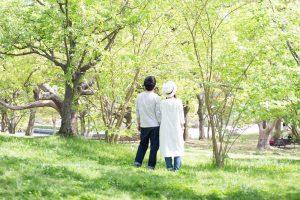 森林_散歩するカップル後姿