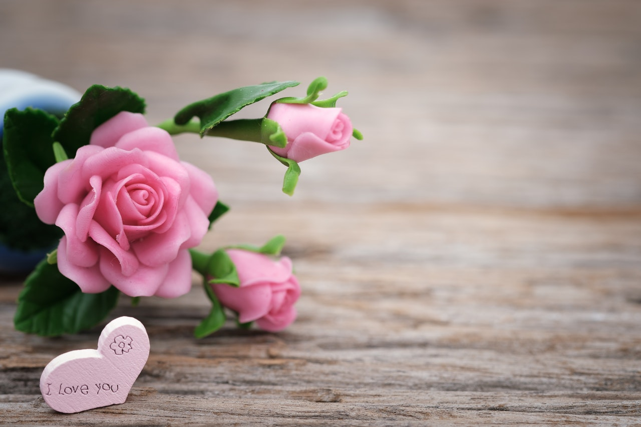 ピンクのバラの花とハート