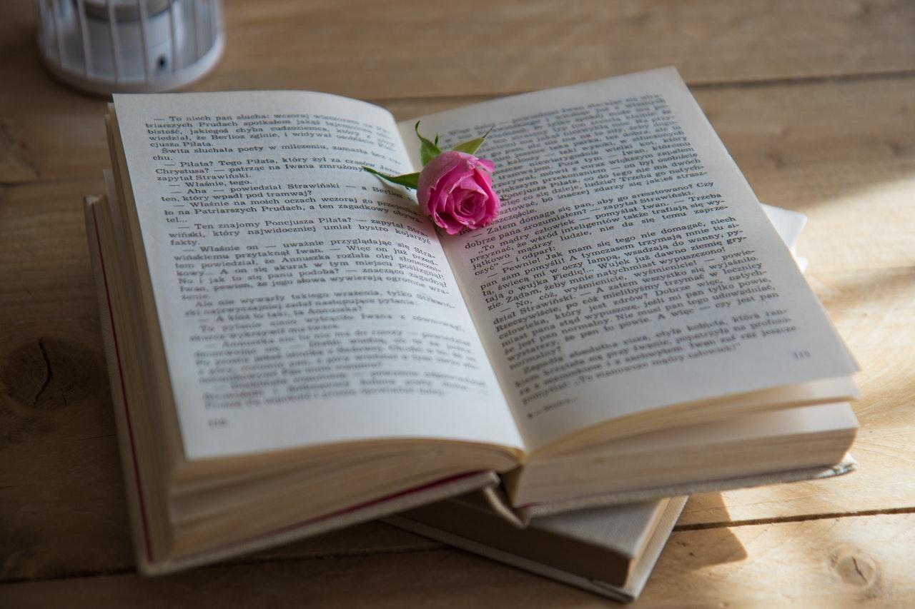 本の上にバラの花
