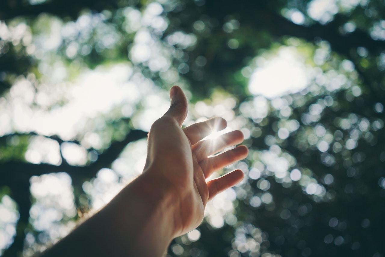 光にかざす手