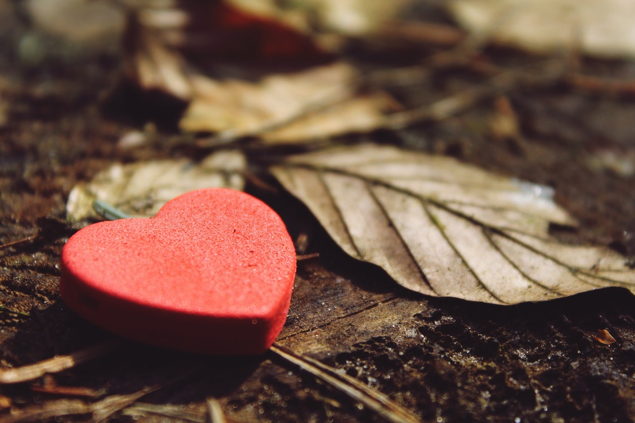 枯れ葉とハートマーク