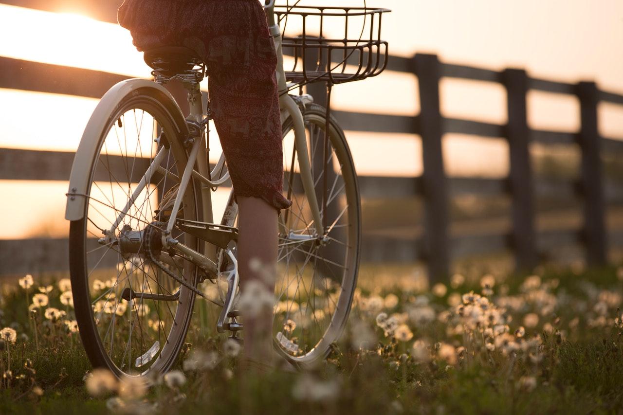 自転車と野原