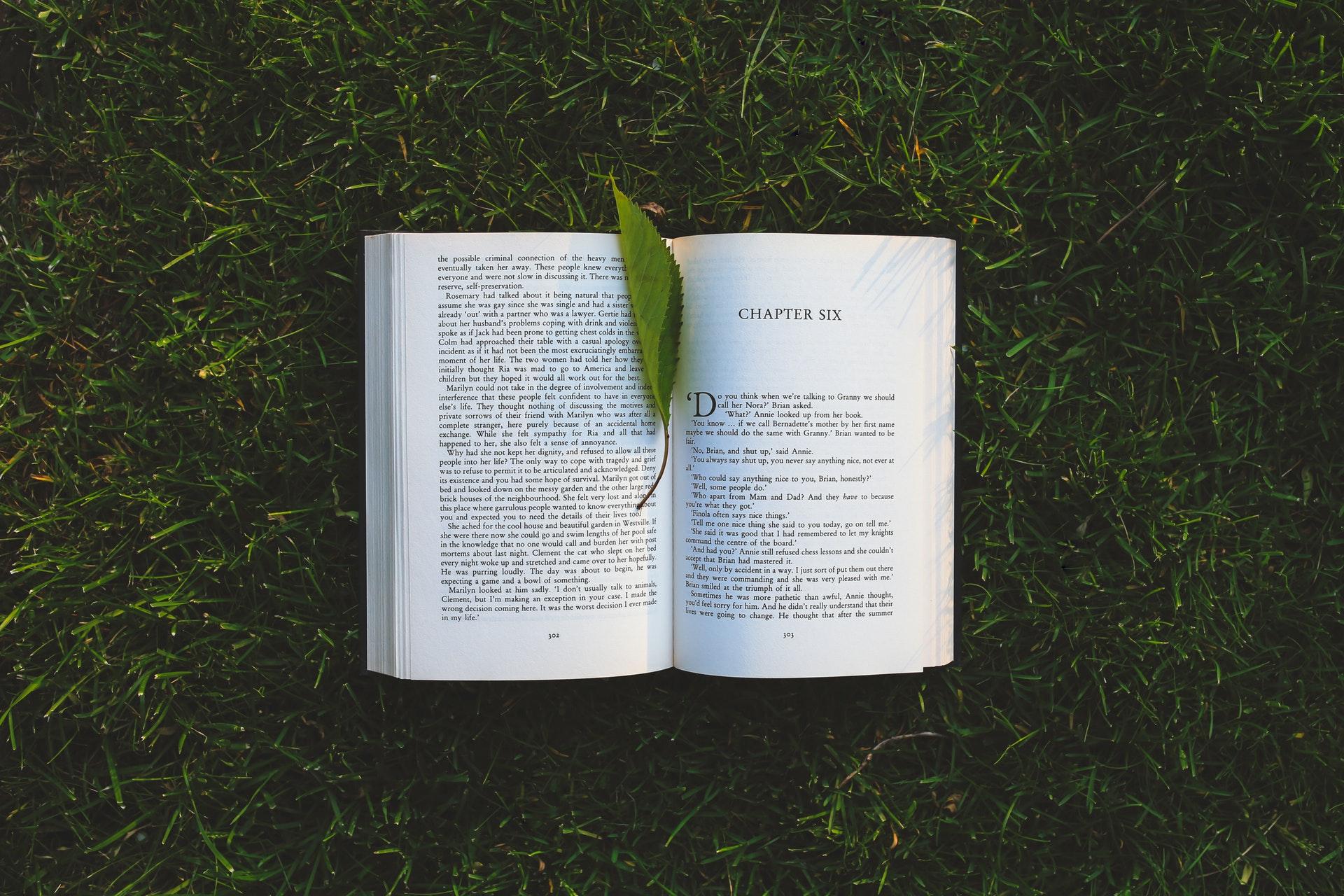 芝生におかれた本