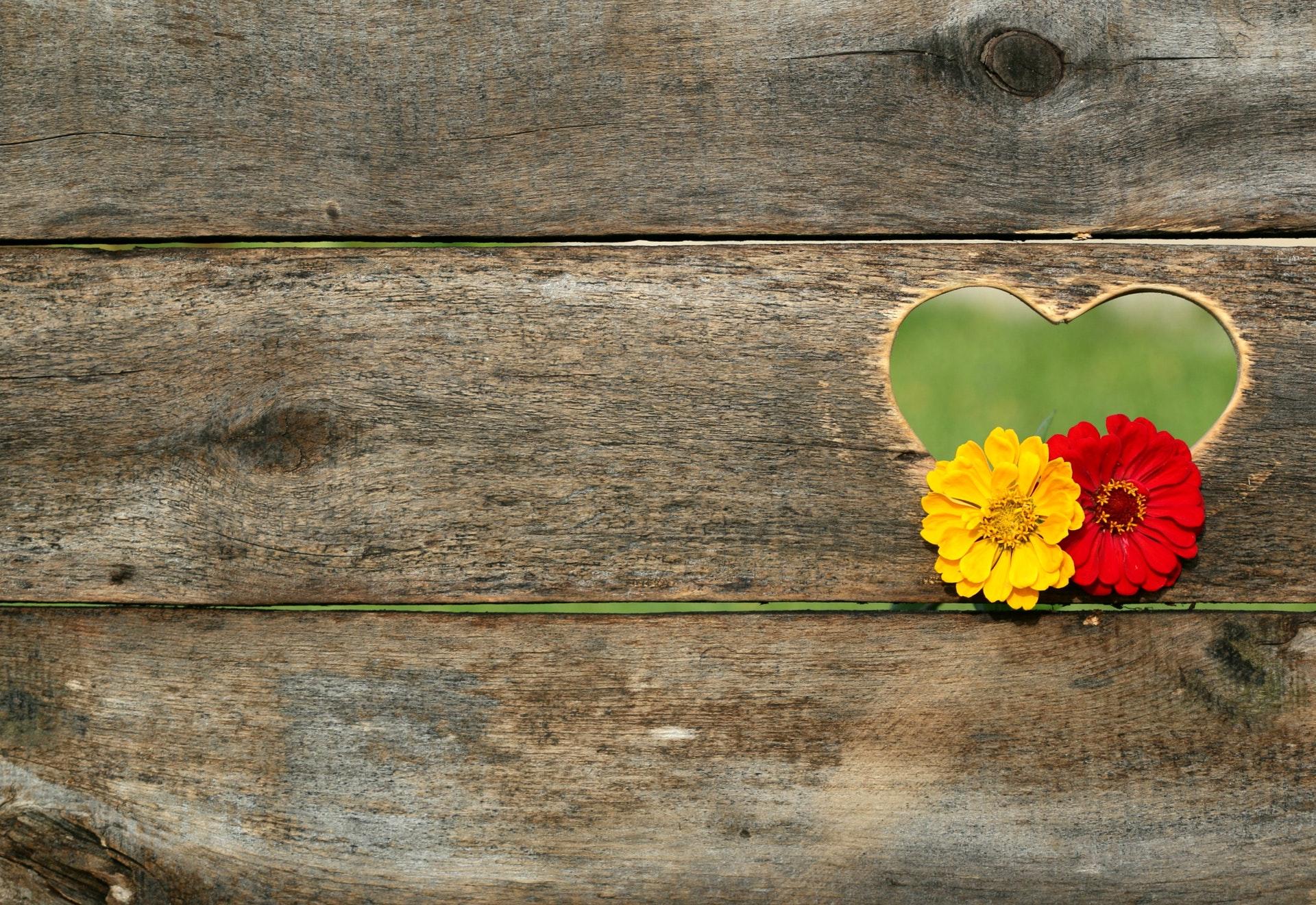 ハートの穴と花