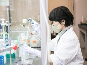 細胞製品の普及に向けた研究開発職