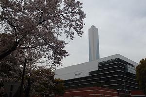東京都から委託されている公共事業。長く働ける環境です。