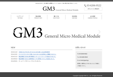 株式会社GM3