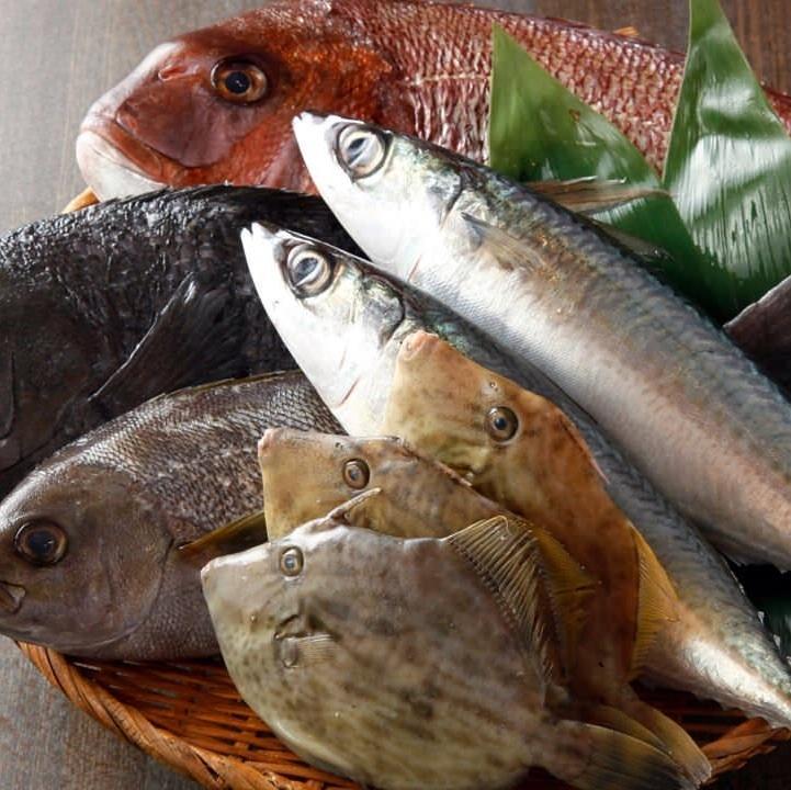 包括瀨戶內海,股票現在從全國各地的新鮮的魚★