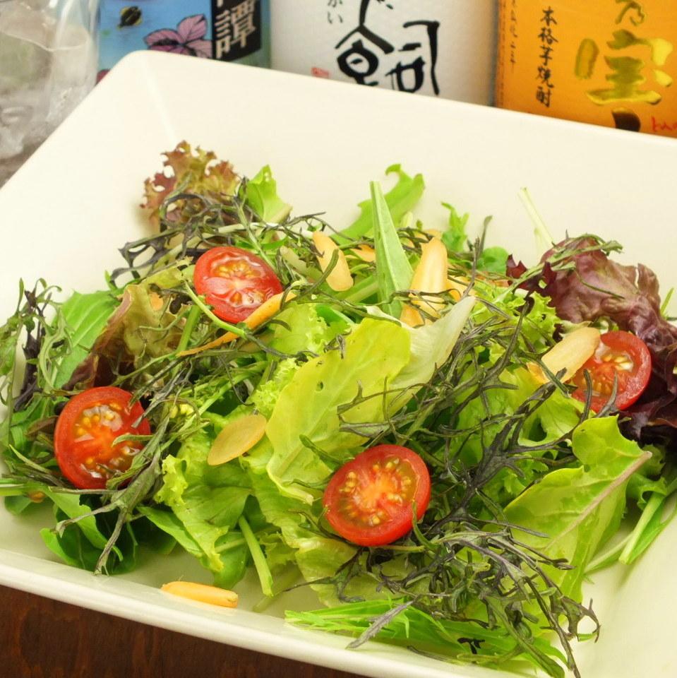 朝採れ有機野菜サラダ