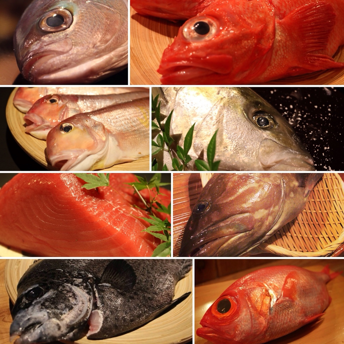 """Fresh fish who go up to Nagahama fishing port.Five times in their own technique, """"ice-cold long aging"""", will go up 10 times and the taste!"""