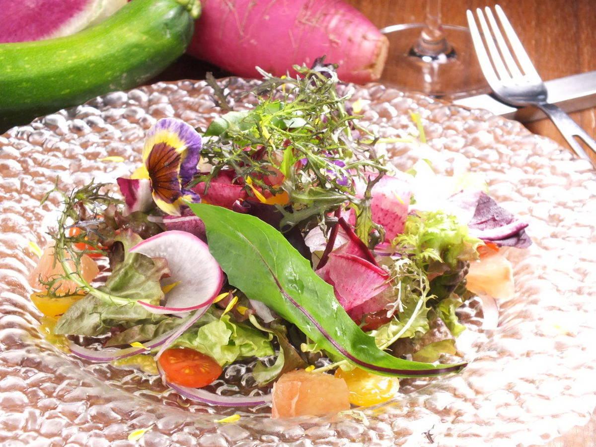 신선한 유기농 야채 모듬 샐러드