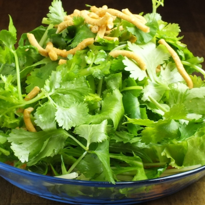 Coriander and fried noodles of crispy salad