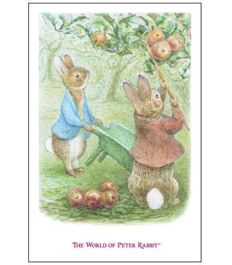 オリジナルポストカードりんご畑のピーターラビットとリトルベンジャミン
