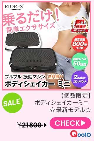 【個数限定】ボディシェイカーミニ ☆最新モデル☆