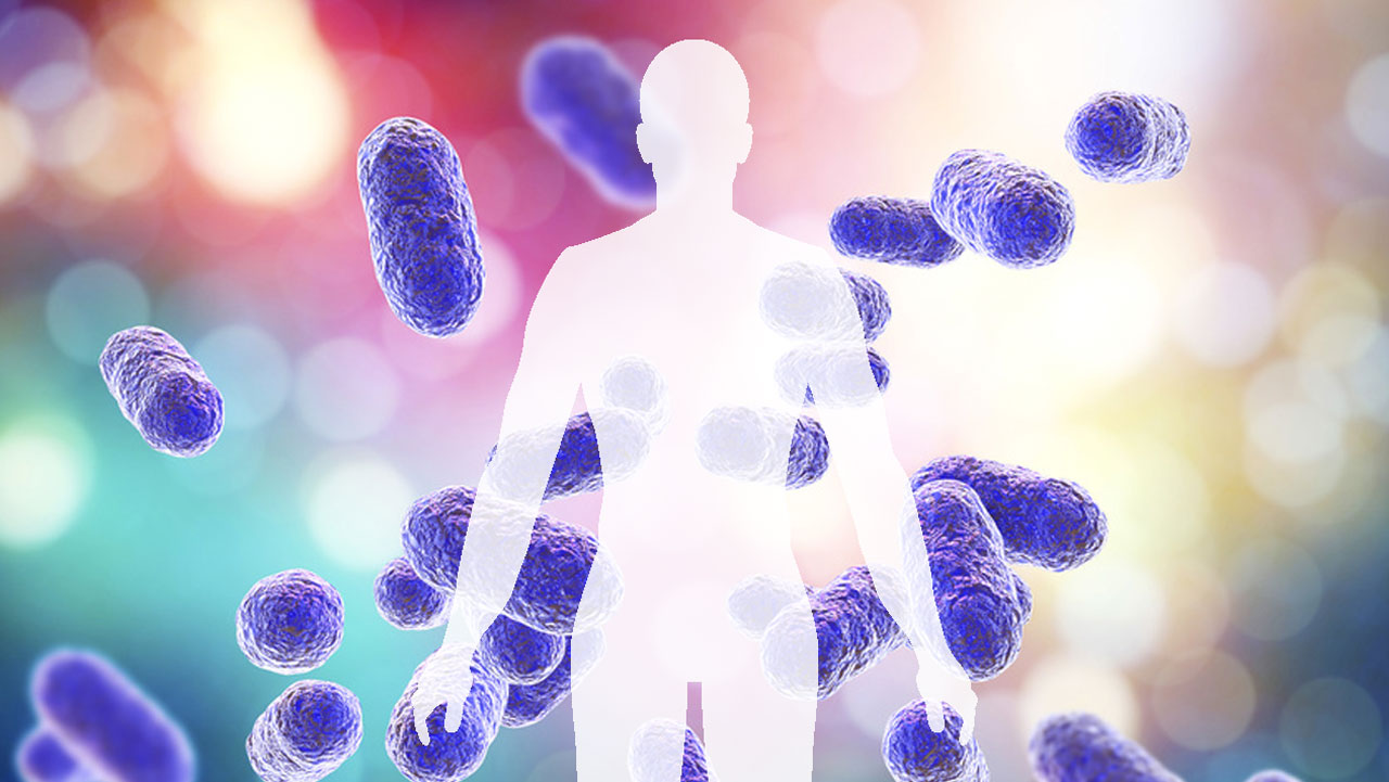 歯周病と全身性疾患の関連性を分子生物学的手法により証明 岡山大の画像です