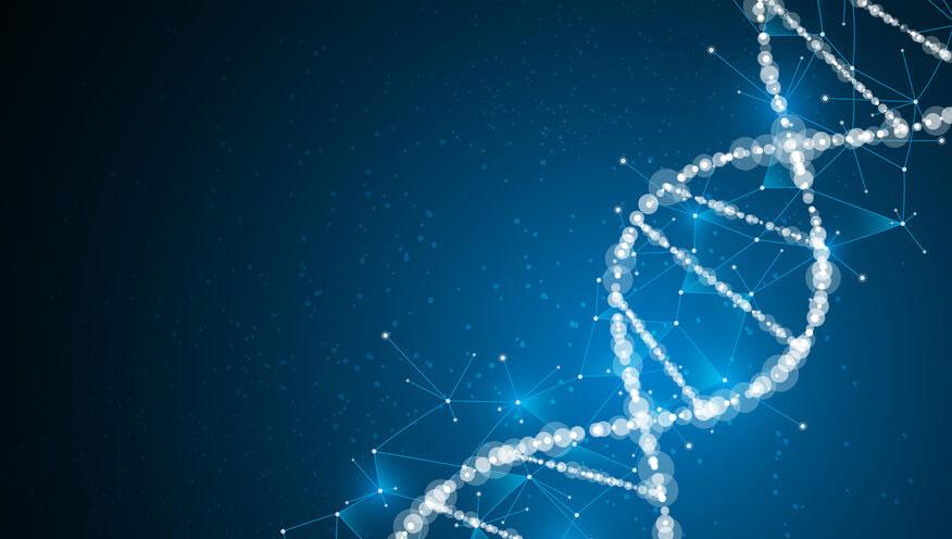 個人の遺伝子の違いがCR充填の予後に与える影響 米国の画像です