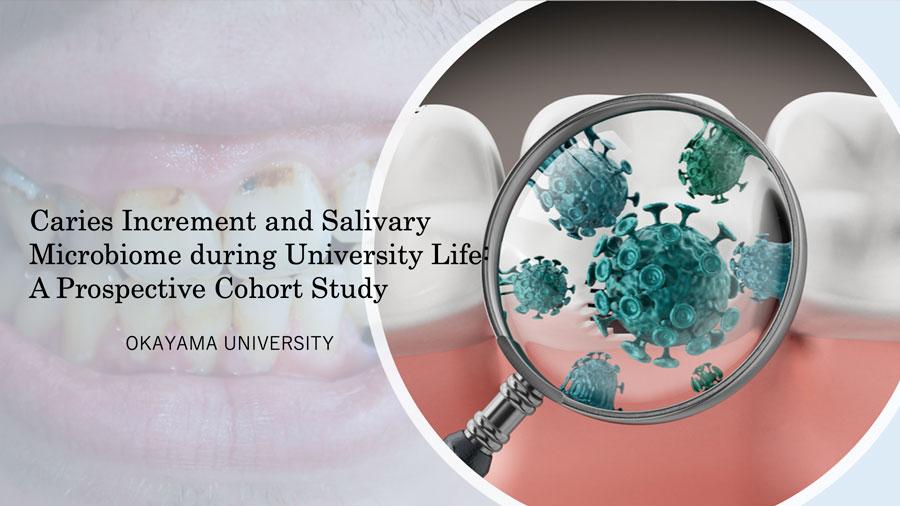 う蝕病原菌についての新発見 岡山大学の画像です