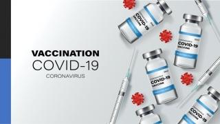 歯科医師によるワクチン接種について 日本歯科医師会の画像です