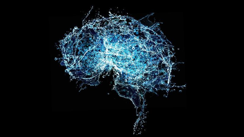 アルツハイマー病患者の脳内でP. gingivalisを確認 米国の画像です