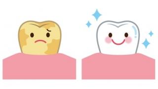 海外における歯科の啓蒙〜幼少期からどのようにして意識を高めているのか〜