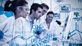 ニッケルアレルギーの発症に関わるタンパク質を発見 東北大学