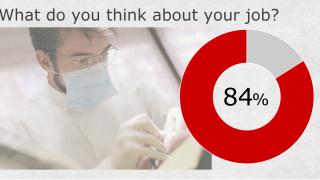 歯科医師になって良かったと思いますか?-現役歯科医の8割が好意的回答を