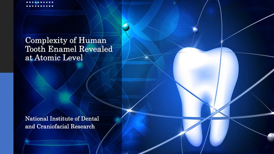 世界初 ヒトのエナメル質の構造を分子レベルで解明 米国NIHの画像です