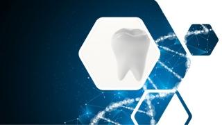 分子標的薬により歯が再生 京大の画像です