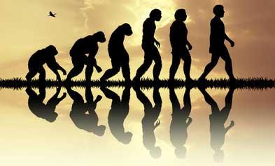 化石研究から見る歯の進化と歯科医療の発展の画像です