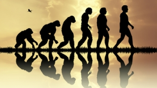 化石研究から見る歯の進化と歯科医療の発展