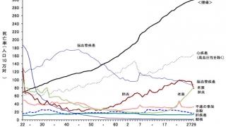 日本人の死因、最新データで肺炎は第5位に後退 厚生労働省の画像です