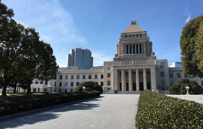 国会における歯科医療についての質疑応答 〜安倍総理、塩崎厚労大臣、山田宏議員〜の画像です