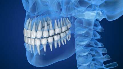 【歯科医師統計】今、もう一度学びたい基礎系科目の画像です