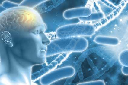 歯周病菌によるアルツハイマー様病態の誘発に関与する原因酵素を特定-九州大の画像です