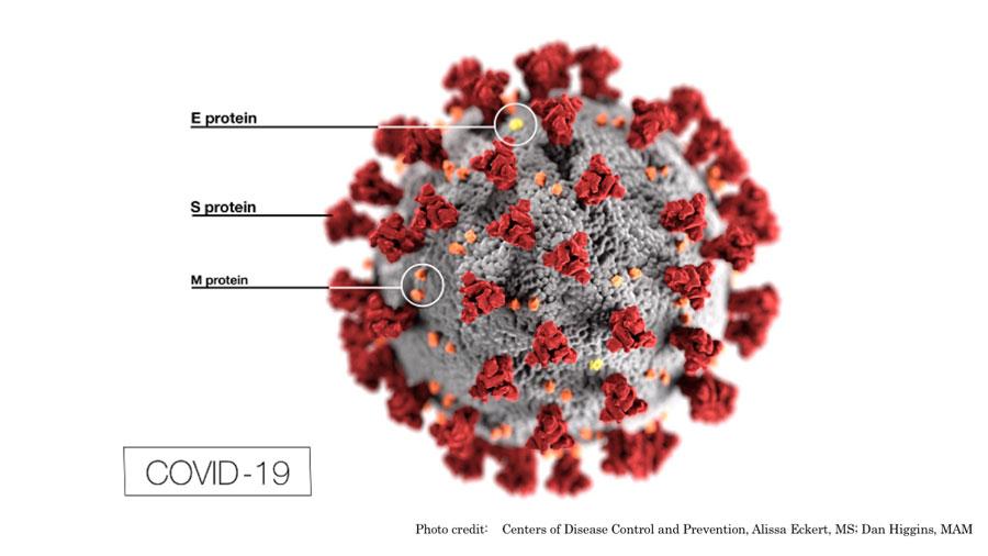 新型コロナウイルス 無症状患者からの感染は稀 WHOの画像です