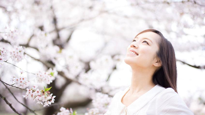 第109回歯科医師国家試験結果 新卒では徳島大学が躍進の画像です