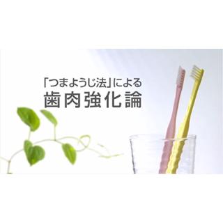 [Youtube] つまようじ法による歯肉強化論の画像です