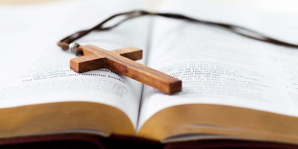 聖經導讀的專業服務