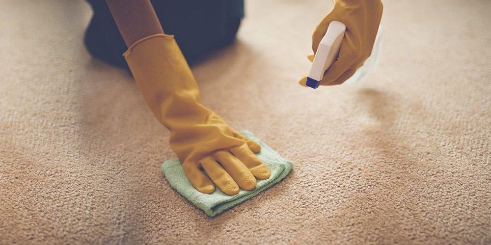 地毯清洗的專業服務