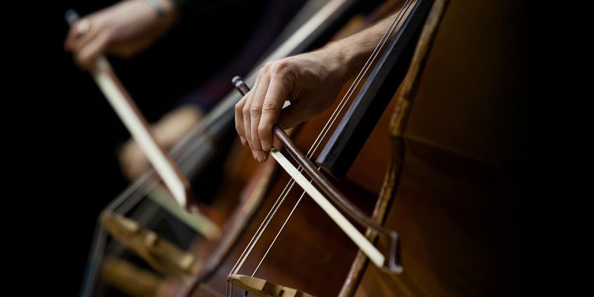 低音大提琴教學的專業服務