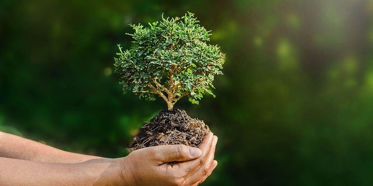 環保工程的專業服務