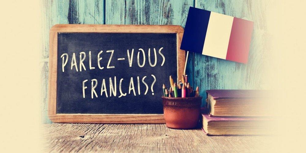 法文翻譯的專業服務