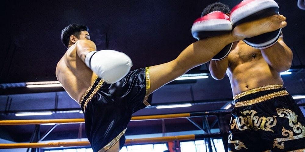 泰拳的專業服務