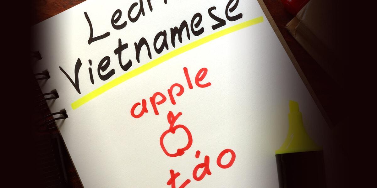 越南文學習的專業服務