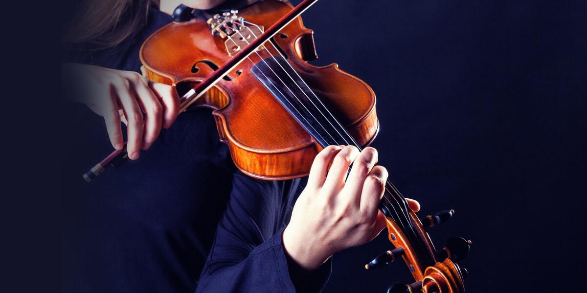 中提琴教學的專業服務