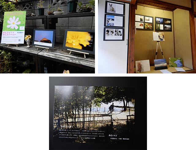 写真2:写真と心にひびく言葉の作品展