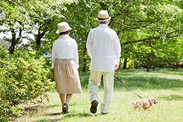 写真:高血圧へのゆっくりとした散歩の効果